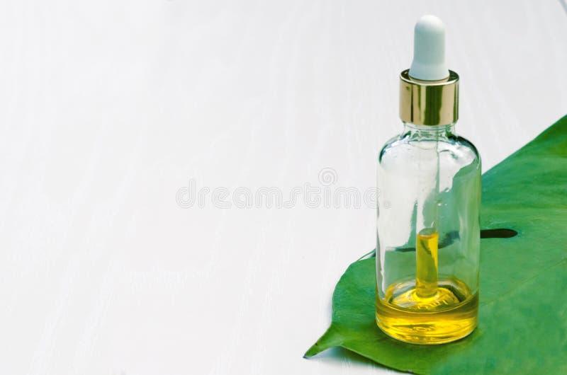 有天然化妆品和有机萃取物的,血清,皮肤护理的根本按摩油瓶在一个白色温泉的一片绿色叶子 免版税库存照片
