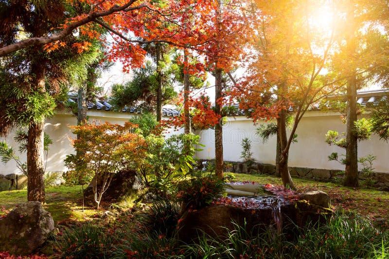有太阳射线的Kokoen庭院 免版税库存图片