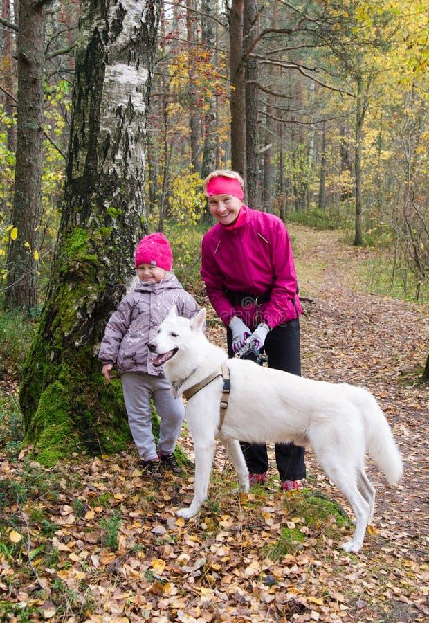 有她的孙女的老婆婆和狗在公园走 免版税库存照片