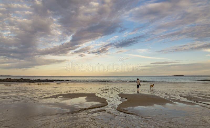 有她的狗步行的妇女在海滩在缅因美国 库存图片