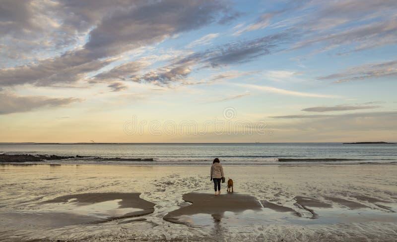 有她的狗步行的妇女在海滩在缅因美国 图库摄影