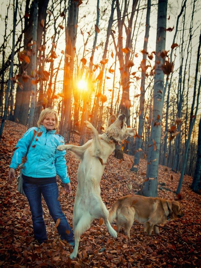 有她的狗的妇女在作用的森林 图库摄影