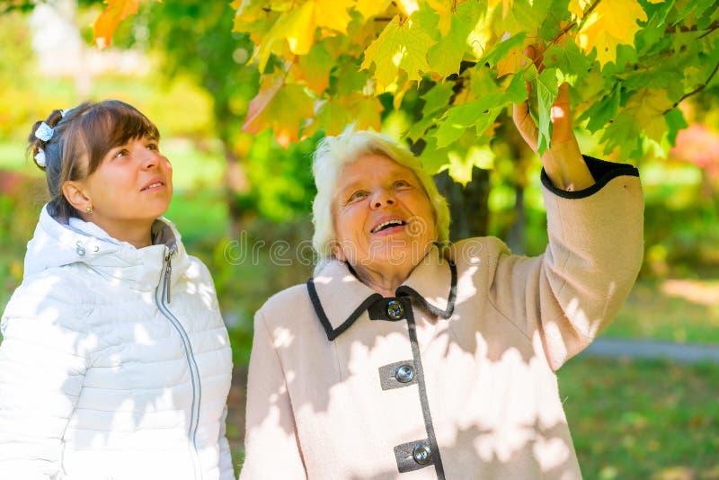 有她的祖母的步行女孩在公园 库存照片