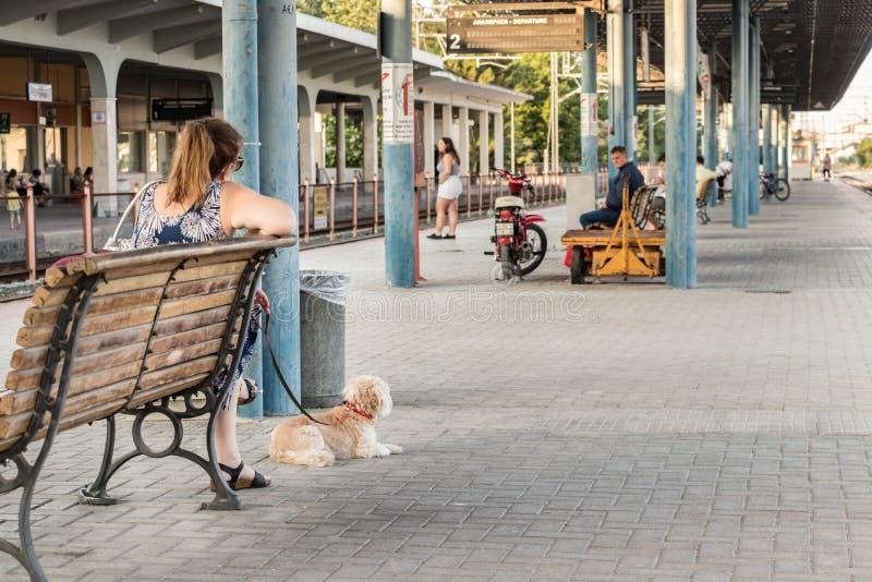 有她的等待在Th平台的狗的一名妇女火车  图库摄影