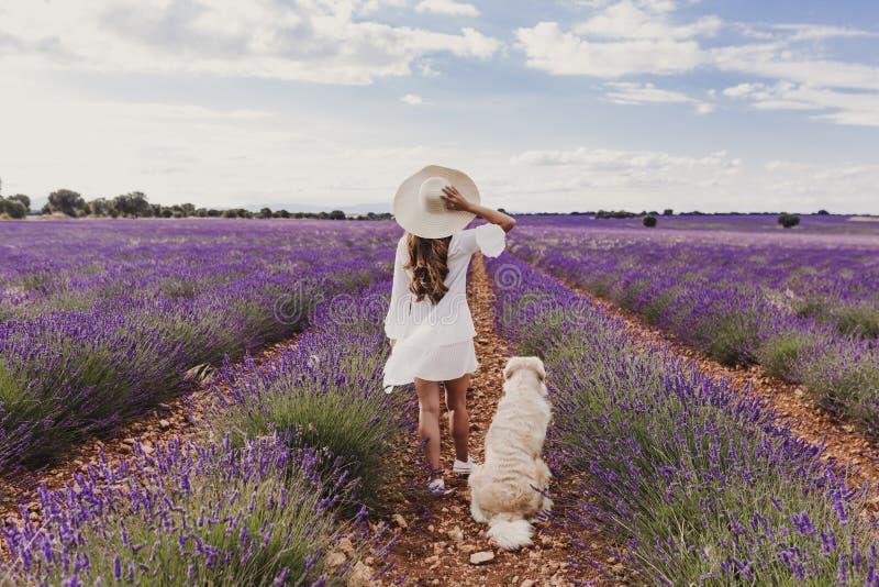 有她的金毛猎犬狗的美女在日落的淡紫色领域 宠爱户外和生活方式 r 库存照片