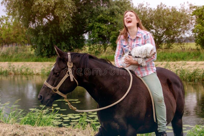 有她的马和她的小犬座的年轻笑的妇女 免版税库存图片