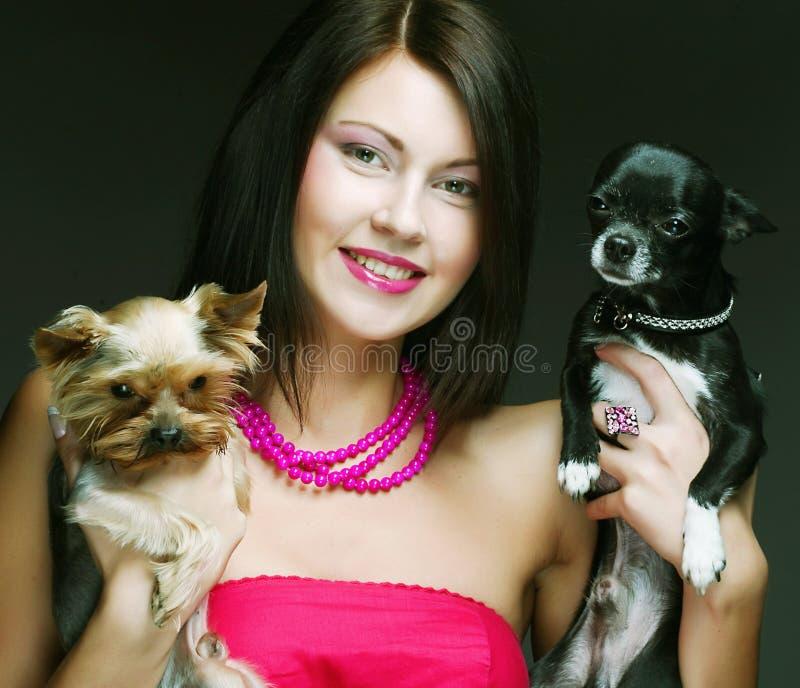 有她的Yorkie小狗的逗人喜爱的女孩 库存图片