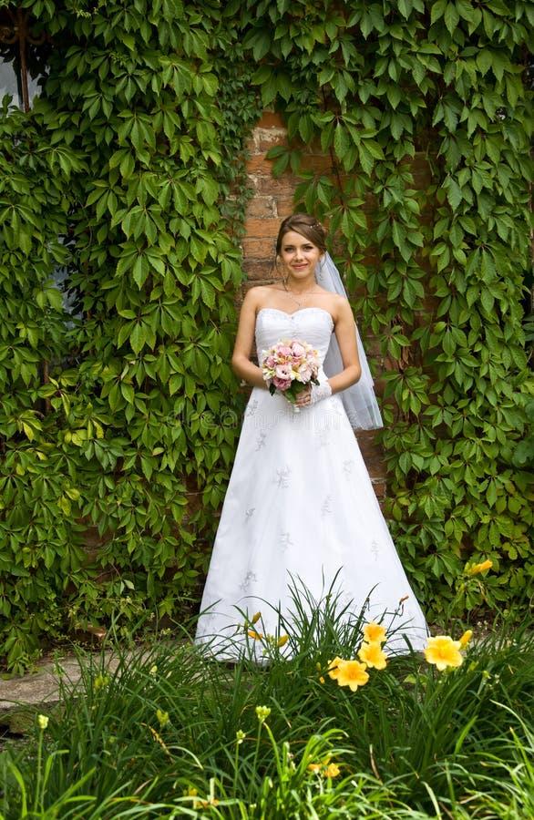 有婚礼花的美丽的新娘 库存图片