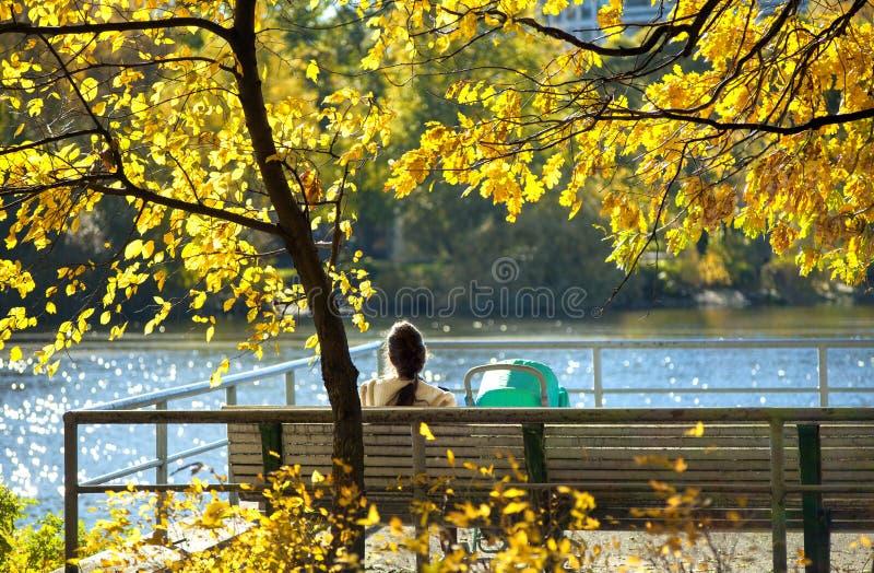 有婴儿车的年轻女人坐一条长凳在河的河岸的秋天公园有黄色秋叶的在 库存照片