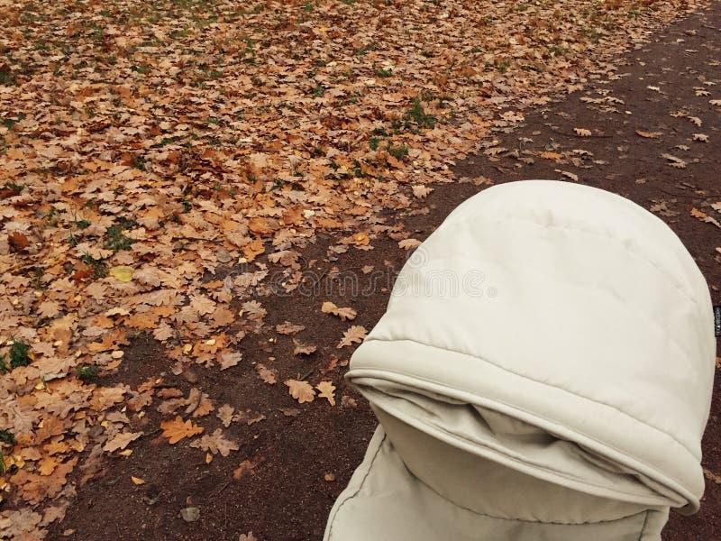 有婴儿车的秋天散步 免版税库存图片