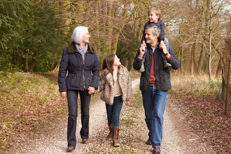 有孙的祖父母步行的在乡下 免版税图库摄影