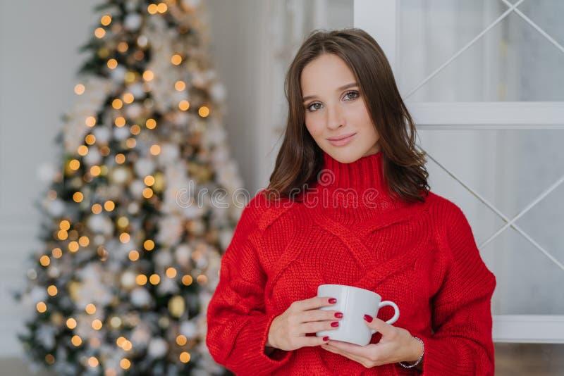 有宜人的出现和构成的美丽的妇女,穿温暖的被编织的冬天毛线衣,拿着杯子咖啡,在装饰附近站立 库存图片