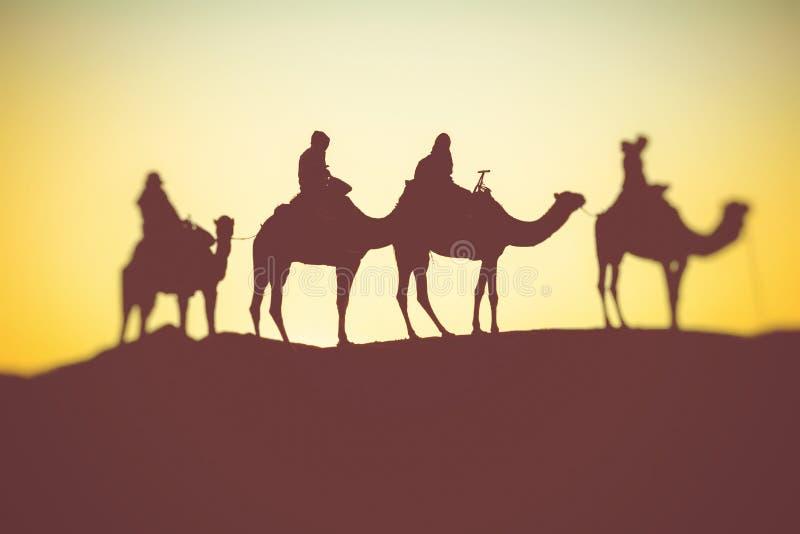 有审阅沙丘的人的骆驼有蓬卡车在撒哈拉大沙漠 摩洛哥,非洲 免版税库存照片