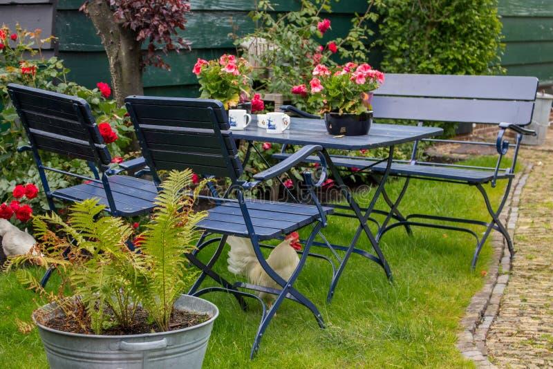 有室外桌和椅子的舒适夏天后院 有茶几和白色母鸡的露台在椅子下 免版税库存图片