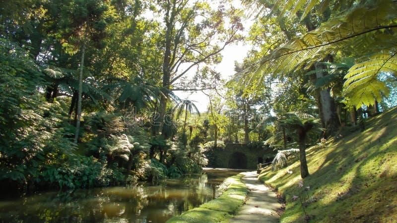 有小河的绿色庭院在圣地米格尔海岛上 免版税库存照片