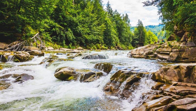 有小瀑布的山河 与山河和树,亚列姆切,Ukraine_的风景 免版税库存图片