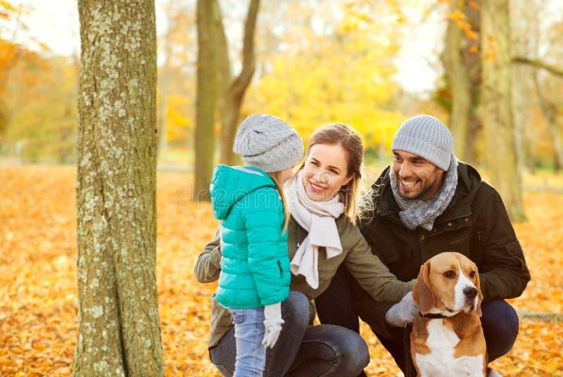 有小猎犬狗的幸福家庭在秋天公园 免版税库存照片