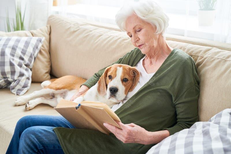 有小猎犬的镇静资深妇女在家 免版税库存图片