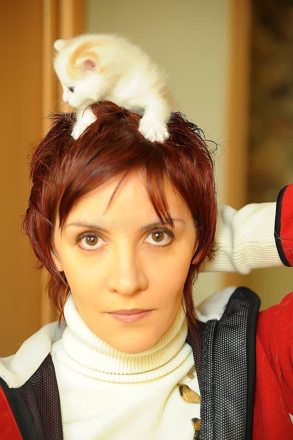 有小猫的少妇 免版税库存照片