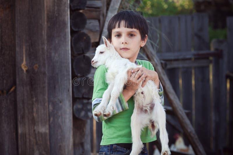 有小的山羊的男孩 免版税图库摄影