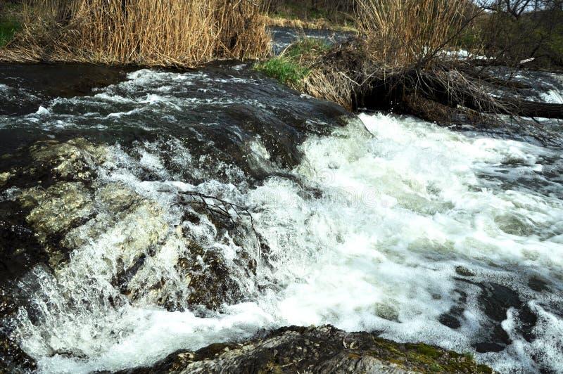 有小石急流的激烈的河 库存图片