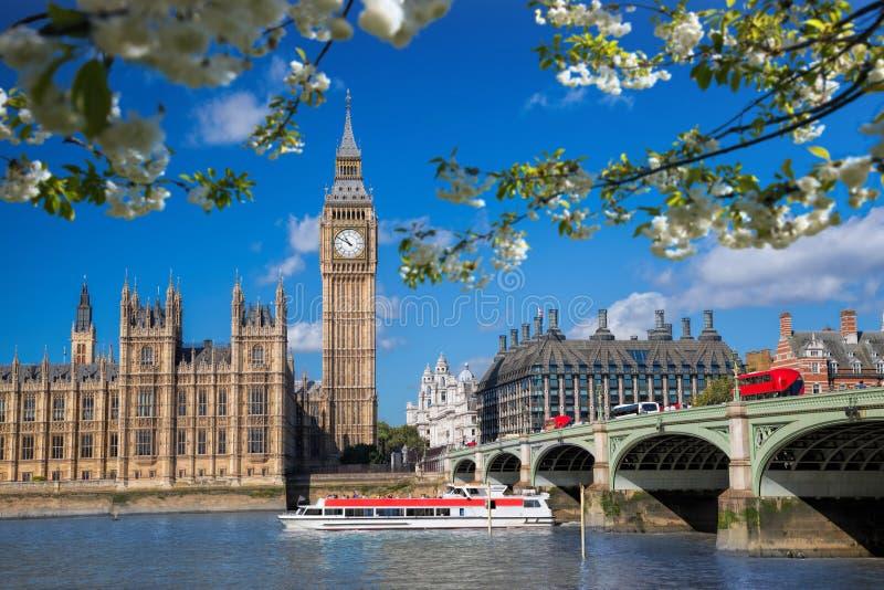 有小船的大本钟在春天在伦敦,英国,英国 库存图片