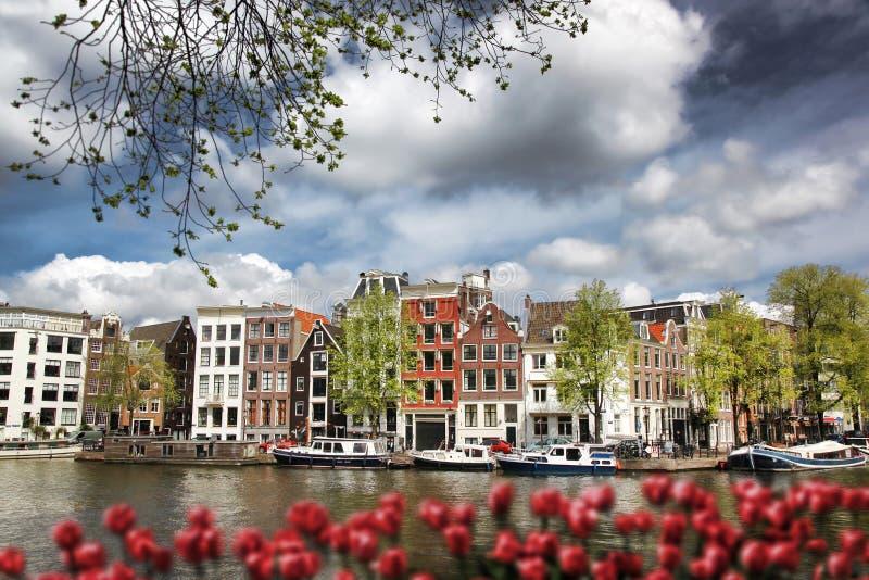 有小船的阿姆斯特丹市在反对红色郁金香的运河在荷兰 免版税库存图片