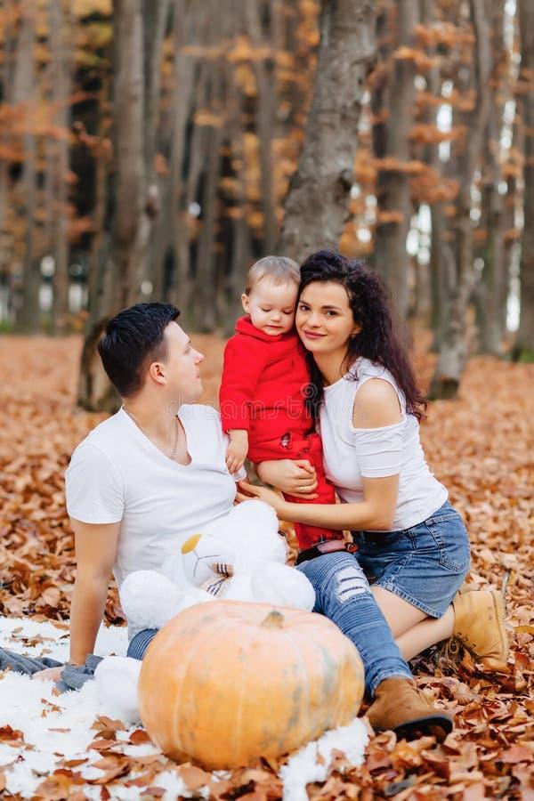 有小逗人喜爱的孩子的幸福家庭在黄色叶子的公园与 库存图片