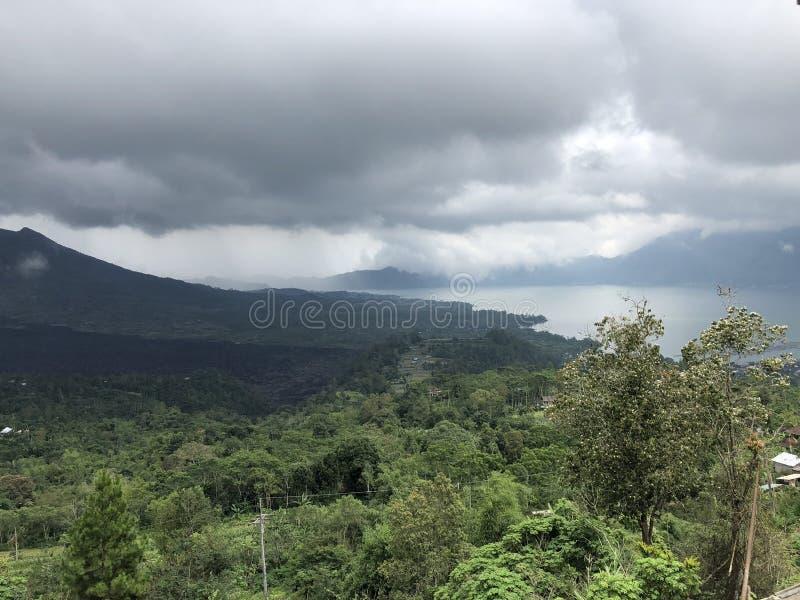 有山和多云天空的美丽的森林在背景中 免版税库存照片