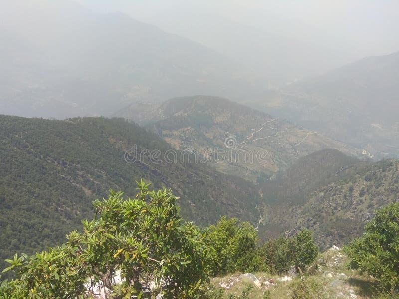 有山和自然的绿色森林 免版税库存照片