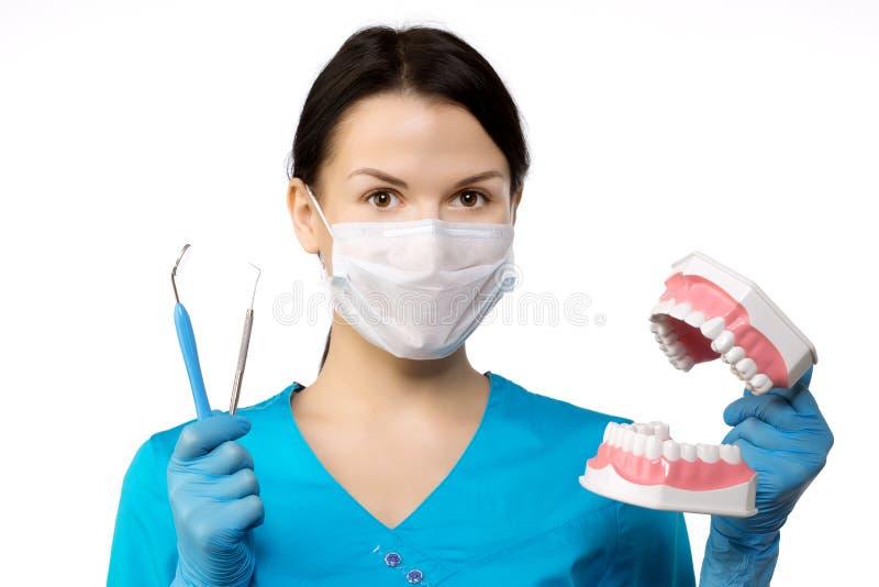 有工具的牙医 牙医牙科的概念,漂白 免版税库存照片