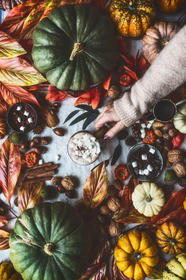 有巧克力热饮和蛋白软糖的女性手藏品杯子在桌上用南瓜和在窗口的秋叶 仍然秋天生活 库存照片