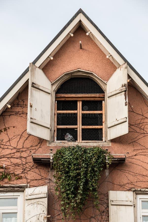 有常春藤和白色快门的老房子关埠玉一村别墅图片