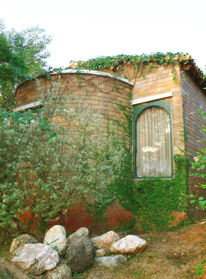 有常春藤植物的老意大利房子 库存图片