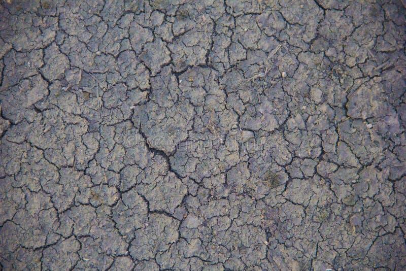 有干燥和破裂的地面的土地 全球性变暖背景 免版税库存照片