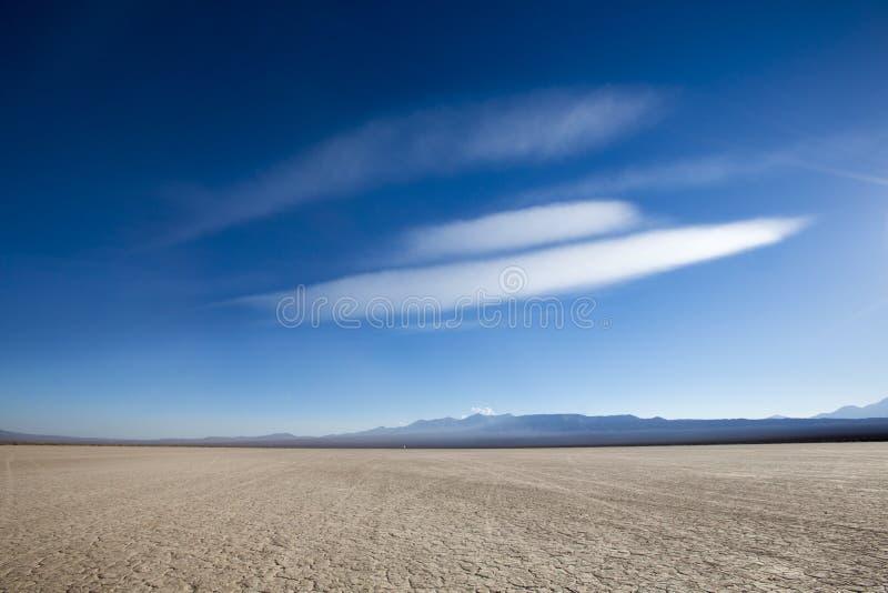 有干燥和破裂的陆运的地产 El Leoncito南美大草原  库存图片