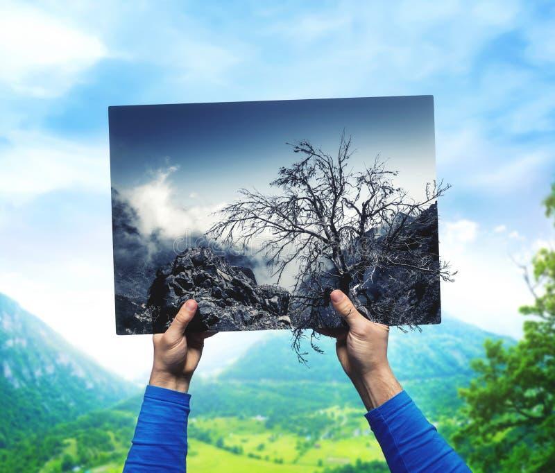 有干燥,被忽略的自然风景的男性手 免版税库存照片