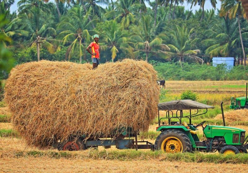 有干草和他的拖拉机的愉快的农夫 库存图片