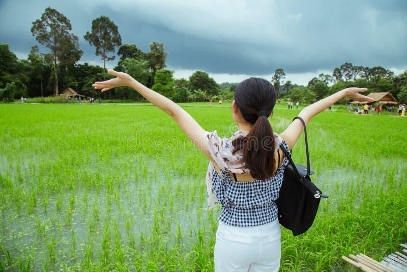 有幸福行动的女孩对横跨米农场的木桥 库存图片