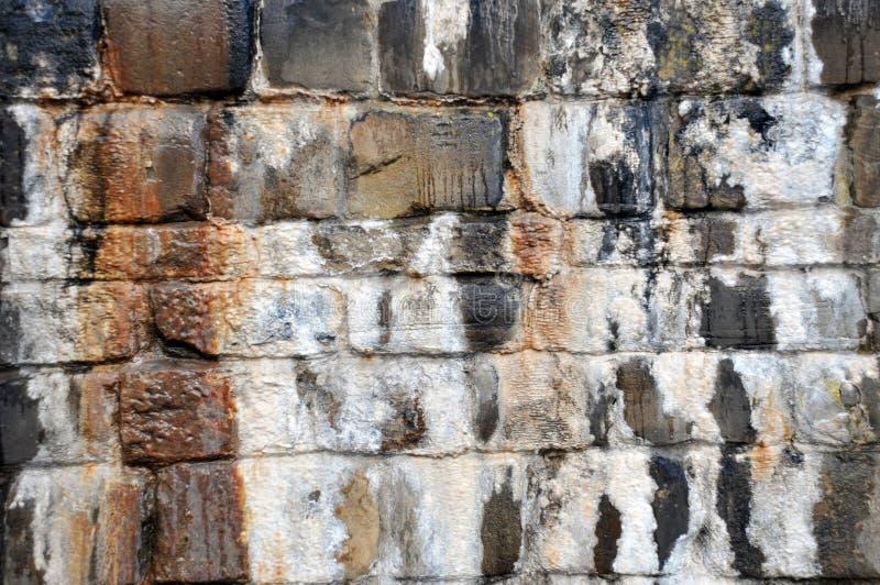 有开始钙化的矿物的石灰石潮湿的标记和水条纹的老不规则的湿石墙形成在黑色树荫下  免版税库存图片