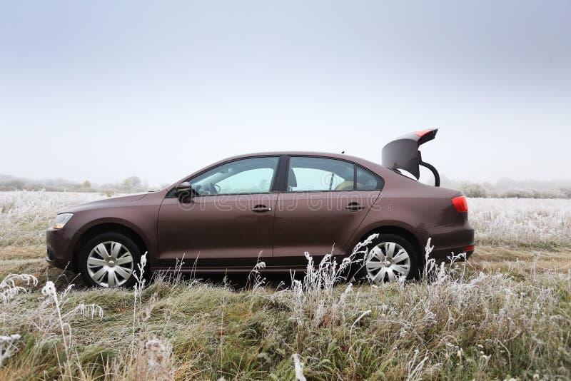 有开放树干的布朗汽车 图库摄影