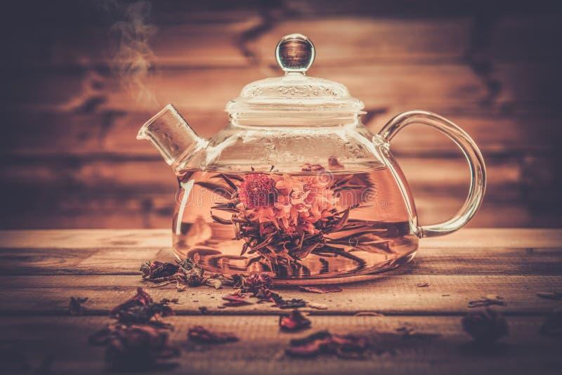 有开花的茶花的玻璃茶壶 库存照片