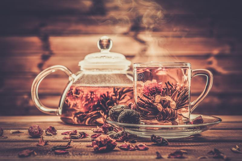 有开花的茶花的玻璃茶壶 免版税图库摄影