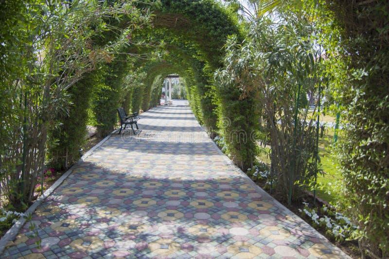 有弧的庭院 图库摄影