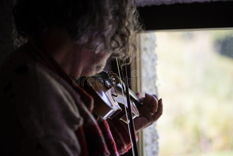 有弹一把古典小提琴的被弄乱的长的头发的男性音乐家 库存图片