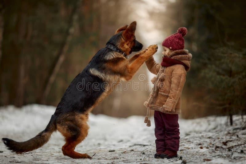 有德国牧羊犬第6只月小狗的女孩在早期的春天 免版税库存图片