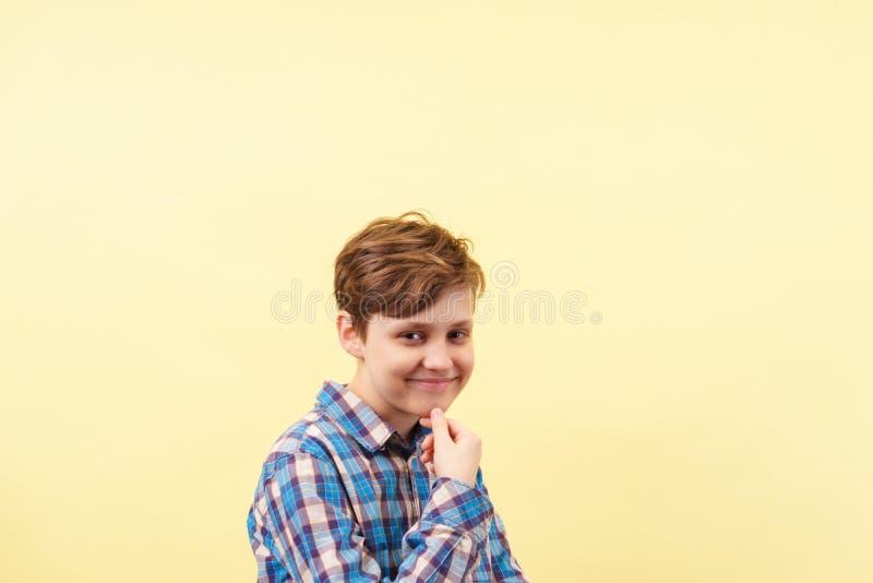 有怀疑微笑的踌躇满志的厚颜无耻的大胆的男孩 图库摄影