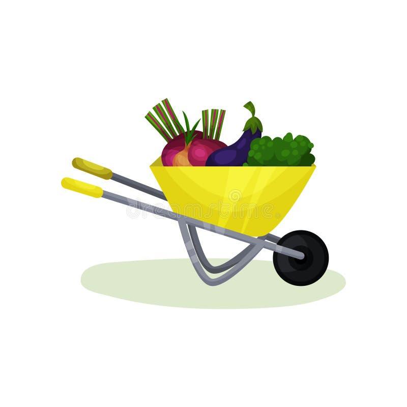 有成熟菜的黄色独轮车 健康和新鲜的农产品 有机食品 平的传染媒介设计 皇族释放例证