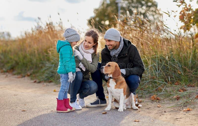 有户外小猎犬狗的幸福家庭在秋天 库存图片