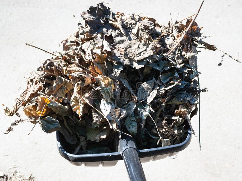 有户外老落叶和废弃物的铁锹 图库摄影